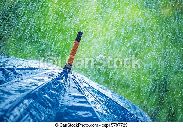Umbrella - csp15787723