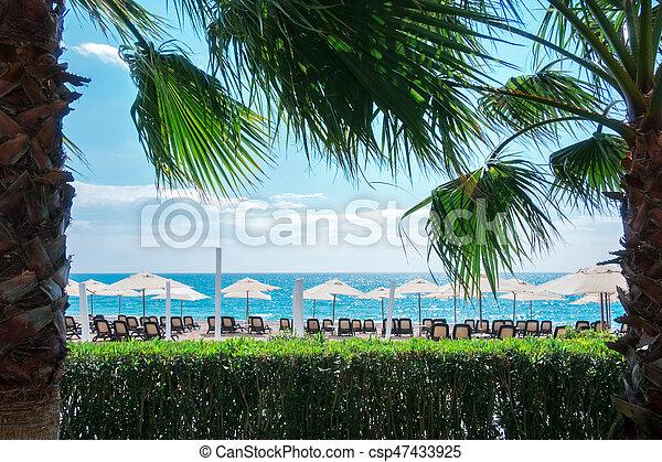 Sombrilla de sombrilla en la playa del mar - csp47433925