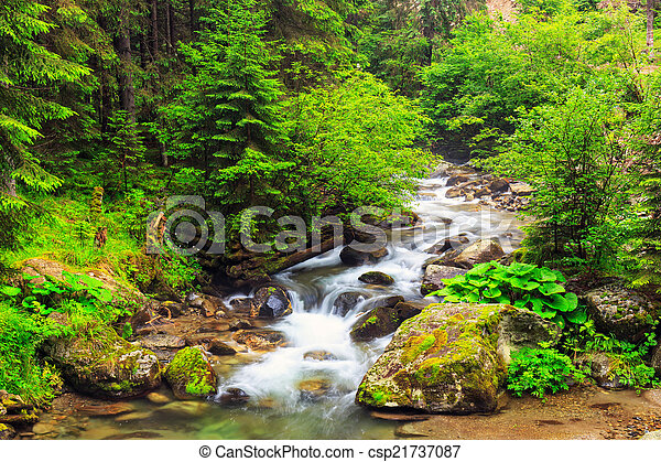 parang, rumania, montañas - csp21737087