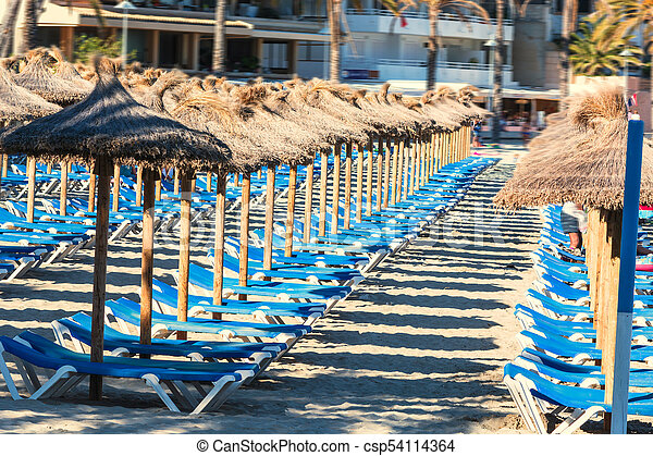 Parasol sea and sunbeds on the beach - csp54114364