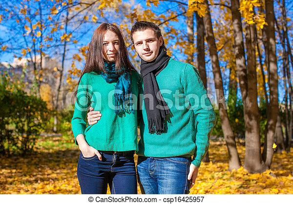 parc, couple, ensoleillé, automne, automne, portrait, jour, heureux - csp16425957
