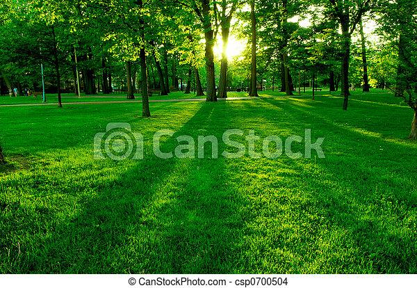 parc vert - csp0700504