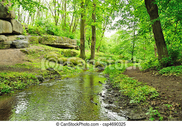 parco, pittoresco - csp4690325