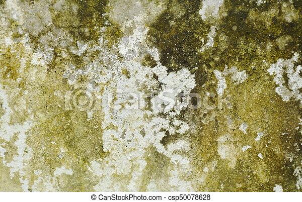 Moss y mancha en el fondo de la pared y textura - csp50078628