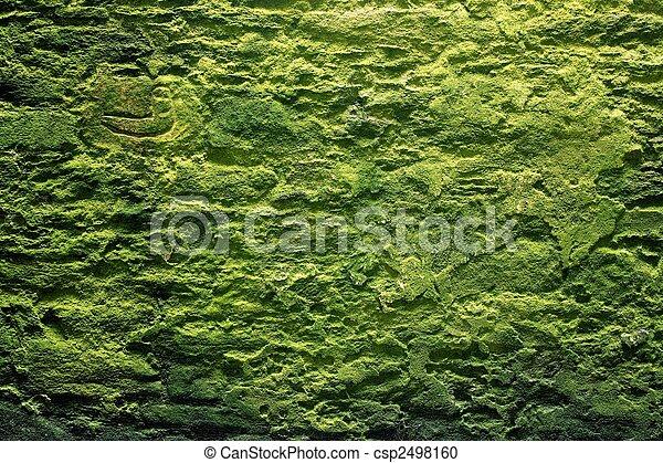 Muro de piedra y musgo - csp2498160