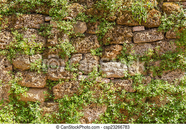 Muro de piedra - csp23266783