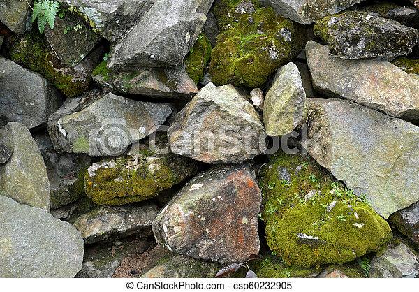 pared, roca - csp60232905