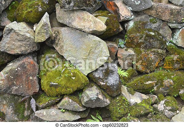 pared, roca - csp60232823