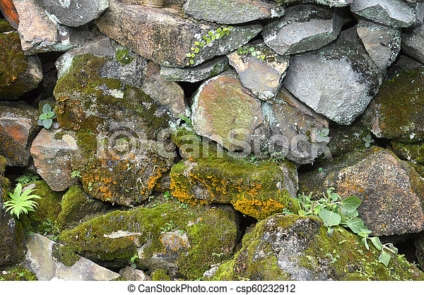 pared, roca - csp60232912