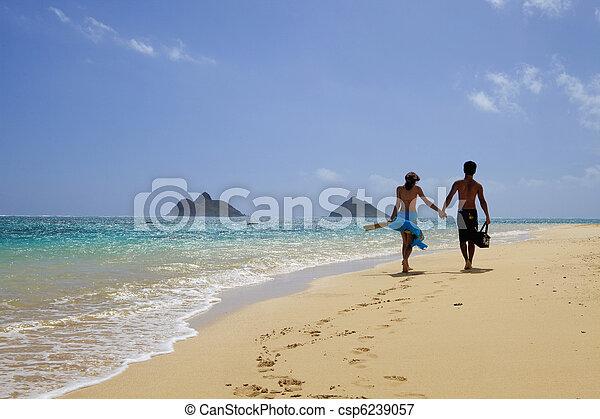Una joven pareja en la playa en Hawaii - csp6239057