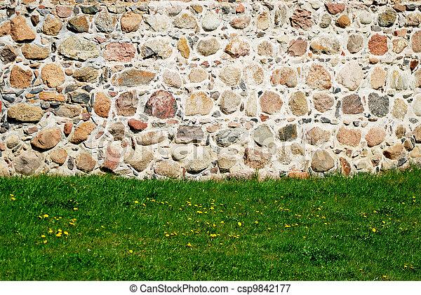 parete, pietra, prato, fondo - csp9842177