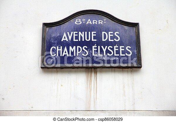 Paris Champs Elysees - csp86058029