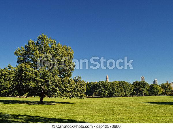 park., central - csp42578680