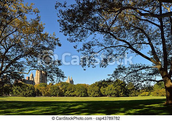 park., central - csp43789782