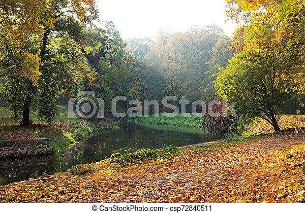 Park in autumn season - csp72840511
