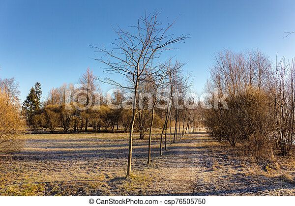 park in early spring - csp76505750