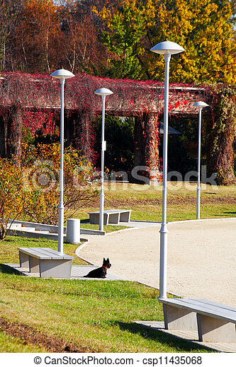 Park in fall time - csp11435068