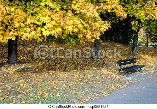 park in the autumn - csp0581824