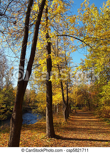 Park in the fall - csp5821711