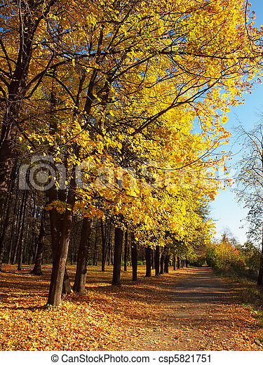 Park in the fall - csp5821751