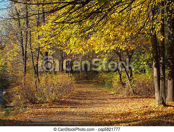 Park in the fall - csp5821777