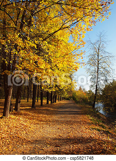 Park in the fall - csp5821748