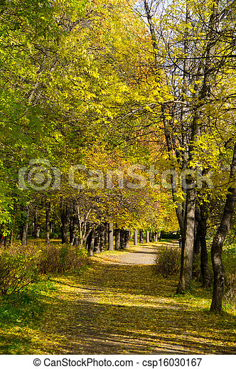 Park in the fall - csp16030167