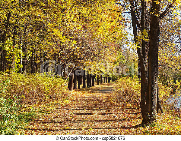 Park in the fall - csp5821676