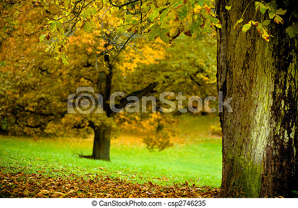 park in the fall - csp2746235