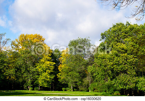 Park in the fall - csp16030620