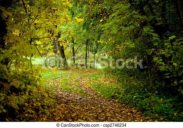 park in the fall - csp2746234
