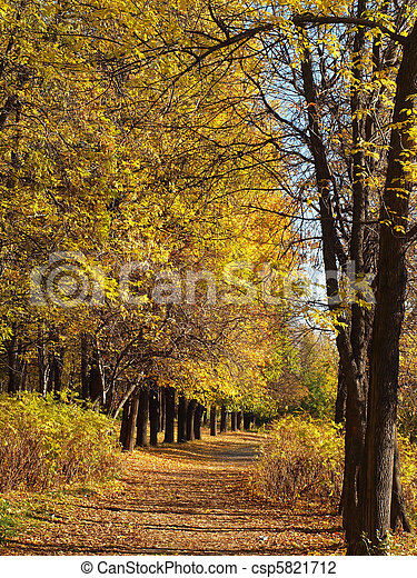 Park in the fall - csp5821712