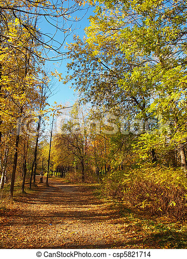 Park in the fall - csp5821714