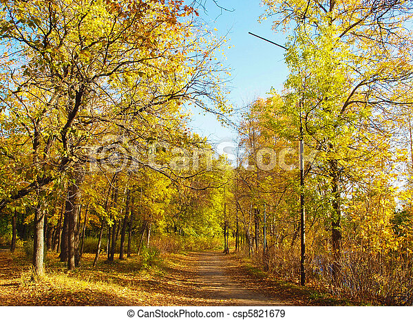 Park in the fall - csp5821679
