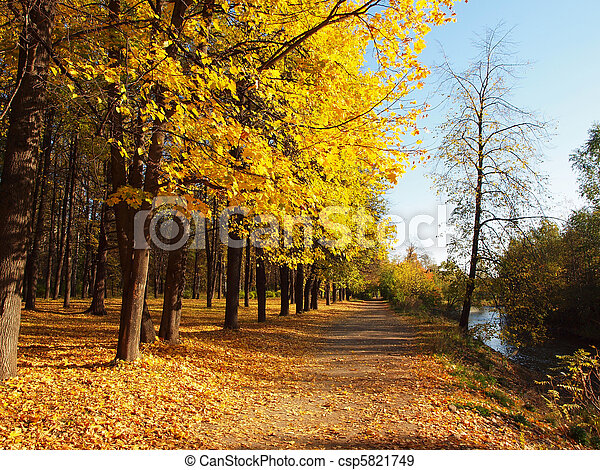 Park in the fall - csp5821749