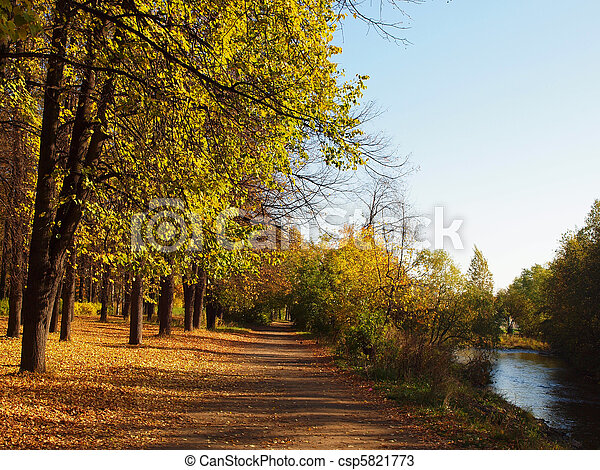 Park in the fall - csp5821773