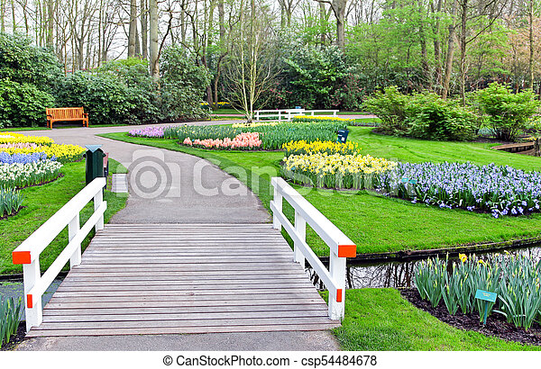 Park Keukenhof, Netherlands - csp54484678