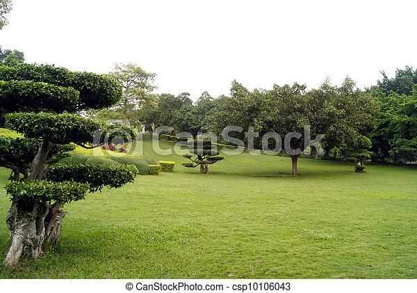 Park landscape  - csp10106043