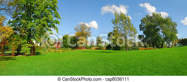 Park panoramic view - csp8036111