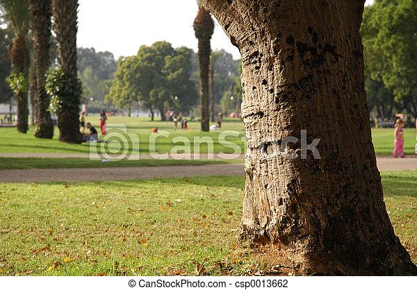 park - csp0013662