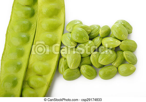 Parkia speciosa seeds on white background - csp29174833
