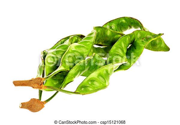 Parkia speciosa - csp15121068