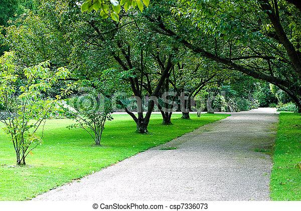 parque, callejón - csp7336073