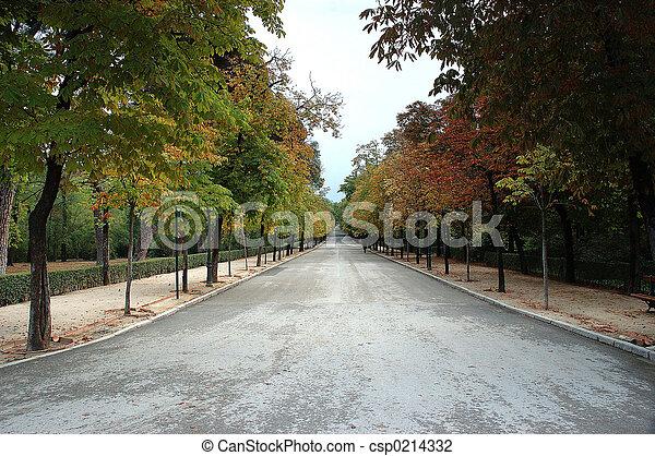 parque, callejón - csp0214332