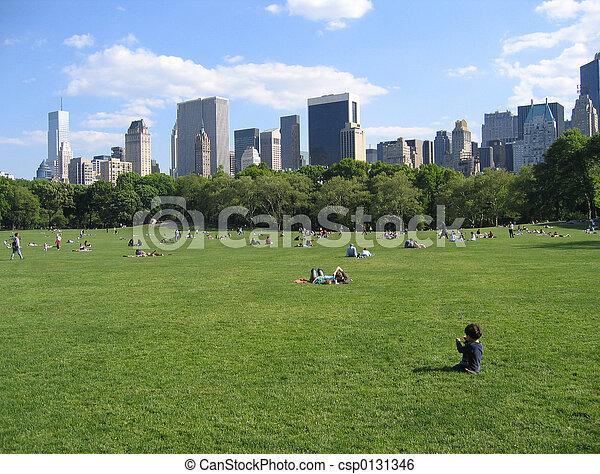 parque central, ny - csp0131346
