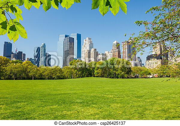 parque, central, york, nuevo - csp26425137