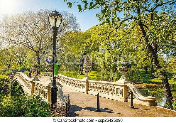 parque, central, york, nuevo - csp26425090