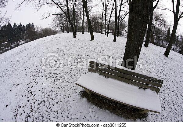 parque, inverno - csp3011255