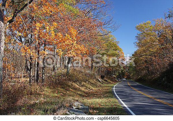 Parque Nacional Shenandoah - csp6645605