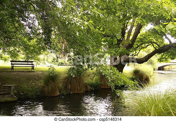 parque, roble, banco, al lado de, río - csp5148314